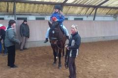 Heilpädagogische Förderung auf dem Pferd